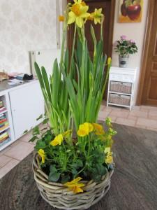 huiselijke lente
